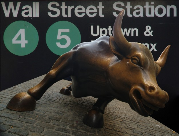 bull-collage-half-size